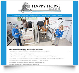 Happy Horse Spa & Rehab